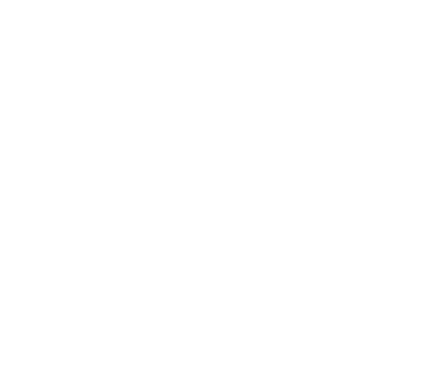 Fort Whisky shop & bar